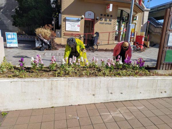 駅前花壇の整備